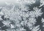 Frost pattern - 06